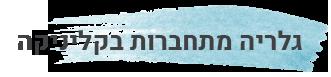 כותרת של מתחברות בקליניקה - שירן סרור